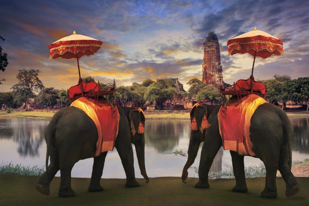 Thailand_Elefants