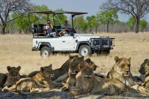 kafue national park animals